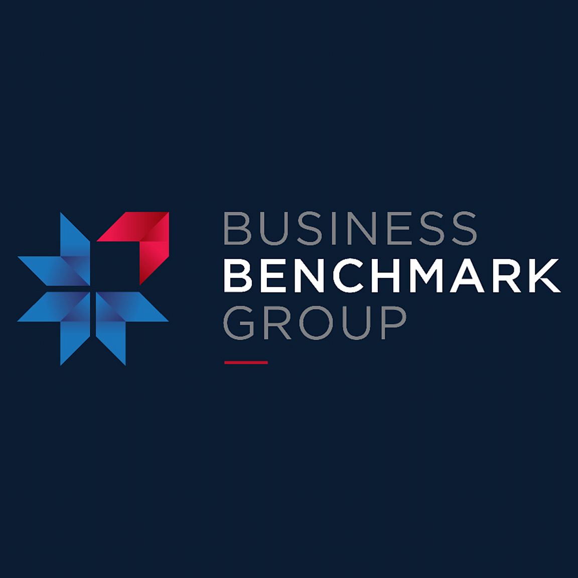 Melbourne Business Coaches Mentors Business Benchmark Group
